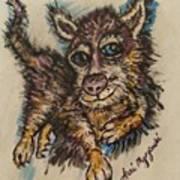 Blue Eyed Husky Art Print