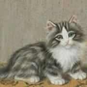 A Kitten On A Table Art Print
