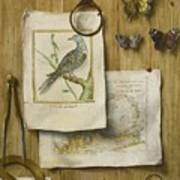 A Trompe L'oeil With Magnifying Glass Art Print