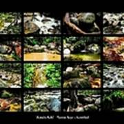 ' Australia Rocks ' Mossman Gorge - North Queensland Art Print