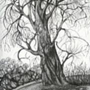 Autumn Dancing Tree Art Print