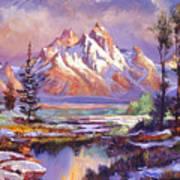 Breaking Winter Sunlight Art Print