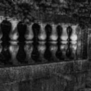 Columns And Pine Art Print
