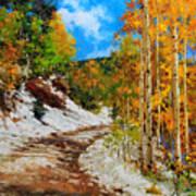Golden aspen trees in snow Art Print