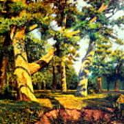 Green Summer-the Oak Forest Art Print