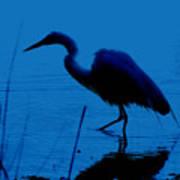 Heron In Water Art Print