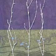Maples In Green Art Print