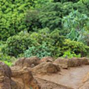 Muddy Kalalaua Trail - Kauai Art Print