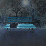Night in the Garden Art Print
