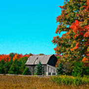Old Barn In Fall Color Art Print