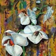 Orchid Yo Art Print