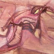 Pinturas De Antonio Tarnawiecki 111 Art Print