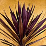 Purple Giant Dracaena Santa Fe Art Print