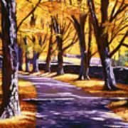 Road Of Golden Beauty Art Print