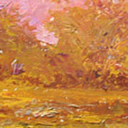 Rural Farmstead  South Carolina  Usa Art Print