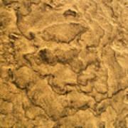 Sand Map Art Print