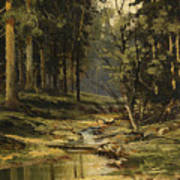 The Forest Brook Art Print