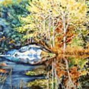 The Tree Across The Pond  Art Print