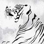 Tiger Animal Decorative Black And White Poster 3 - By Diana Van Art Print