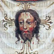 Veronica's Veil Art Print