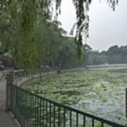 0038-2- Beihai Park Art Print