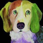 0356 Dog By Nixo Art Print
