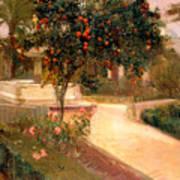 Garden Alcazar Seville Art Print