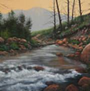 090430-1216   Trout Creek - Spring Art Print
