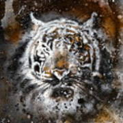 Tiger Collage On Color Abstract  Background  Rust Structure Wildlife Animals Art Print