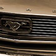 1966 Ford Mustang  Art Print