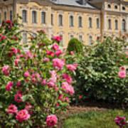A Beautiful Rose Bush Castle Park 1 Art Print