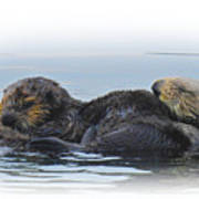 A Mama Sea Otter And Her Babe Art Print