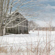 A Winters Day Art Print