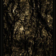 Abstract Gold And Black Texture Art Print