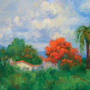 Acacias And Red Roofs Art Print