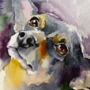 Adopt125 Art Print