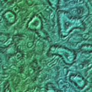 Alien Skin Art Print