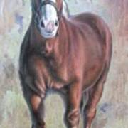 Arthur The Belgian Horse Art Print