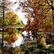 Autumn Reflections Art Print