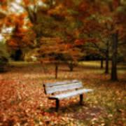 Autumn Splendors Art Print