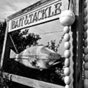 Bait And Tackle Art Print