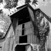 Barn In Kentucky No 66 Art Print