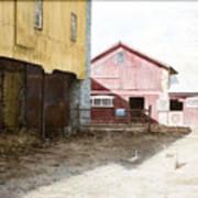 Barn Yard Art Print