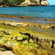 Beach At Dominican Republic Art Print