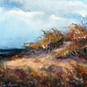 Beach Dune 2 Art Print by Peter R Davidson