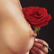 Beautiful Woman Breast And A Red Rose Art Print by Oleksiy Maksymenko