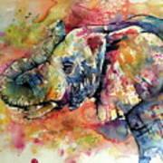 Big colorful elephant Art Print