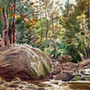 Big Rock At Sope Creek Art Print