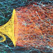 Big Trumpet Art Print