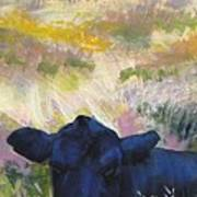 Black Cow Dartmoor Art Print